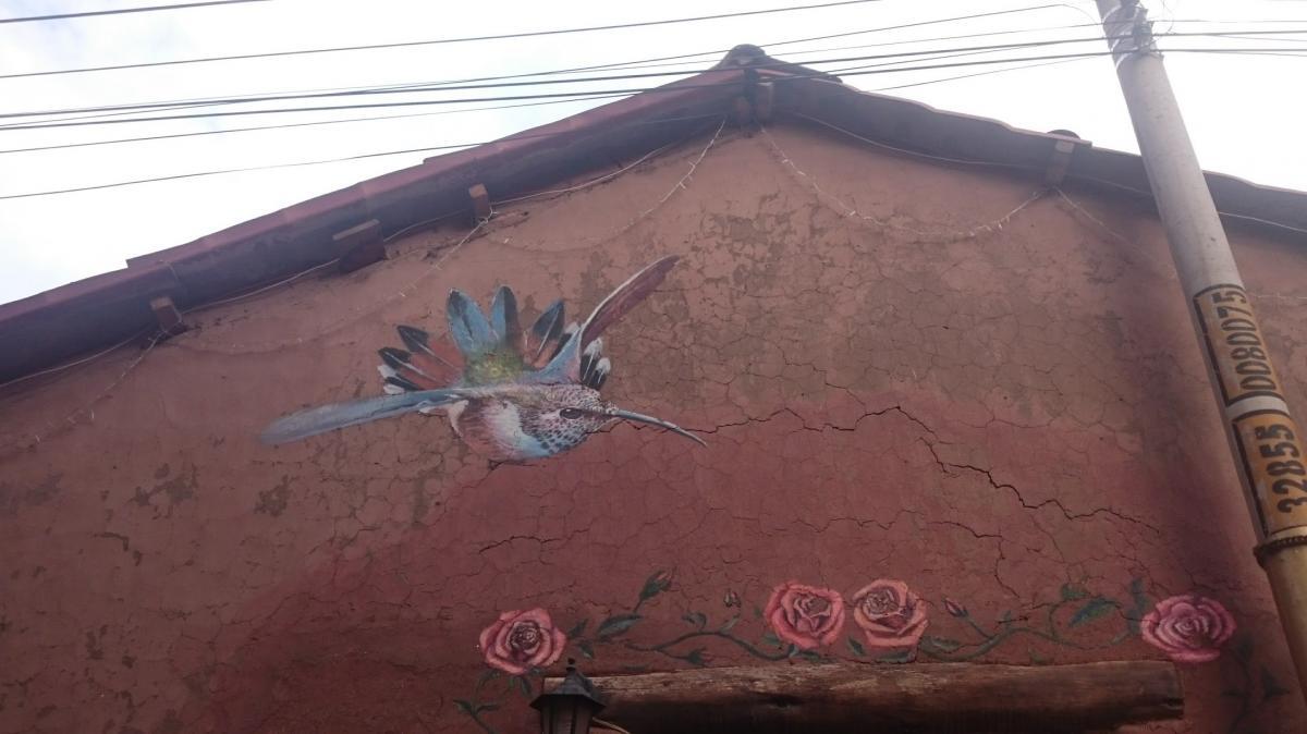pisac colibri